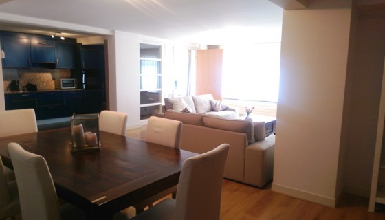 Per May 1st : Zeestraat 95 ,fully furnished  apartment in Willemspark building