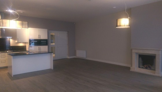 Per May 1st 2020 : Denneweg 4A , Newly renovated apartment with old charm on the famous Denneweg